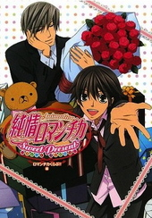 Animation 純情ロマンチカ-Sweet Present-